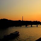 Sunset on the Seine  by Christine Oakley