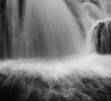 """partial of Lilydale falls"" by Husky"