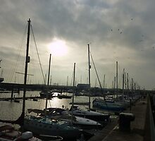Fleetwood Marina  by Lilian Marshall
