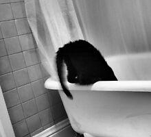 Victorian Kitty 2 by Carrie Bonham