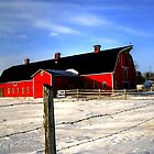 WINTER BARNYARD by Larry Trupp