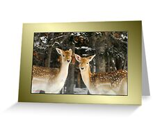 Aren't We Beautiful?! :) Greeting Card