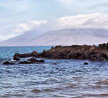 The Endless Beauty of Maui, Hawaii by Teresa Zieba