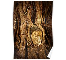 Carved Buddha Head Poster