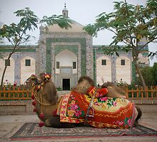 Abakh Hoja Tomb and camel - Kashgar by Speedy