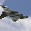 Eurofighter Typhoon by Shane Ransom