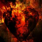 Heart of Fire by Sybille Sterk