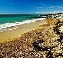 Shoreham Beach, East Sussex, UK by George Parapadakis (monocotylidono)