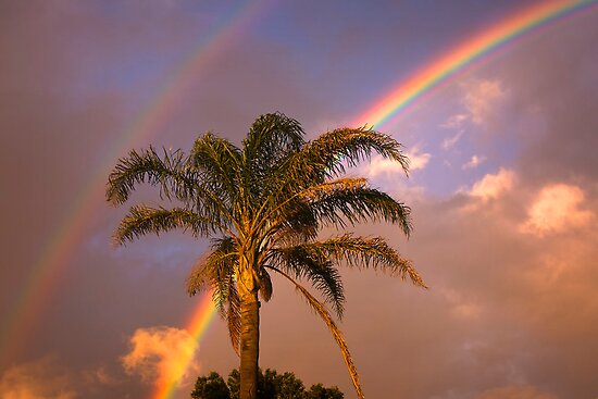 Double Rainbow by Hans Kawitzki
