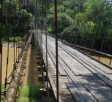 Hanging bridge Take 2 by Guy Tschiderer