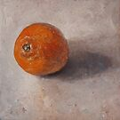Orange on the table by AheadForDinci