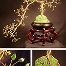 Jade Cascade #1, wire tree sculpture by Sal Villano