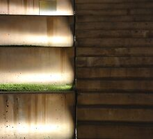 Stairs and Grass Seating  by DiamondCactus