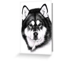 Alaskan Malamute Portrait Greeting Card
