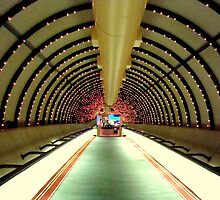 Tunnel Vision   ^ by ctheworld