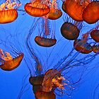 Deep Sea Abstract by Ken McElroy