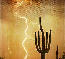SW Saguaro Desert Landscape by Bo Insogna