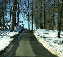 Wintery Road at Montpelier by Susan Russell