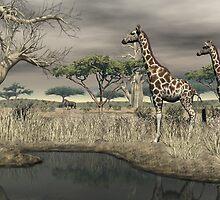 Giraffe by Walter Colvin