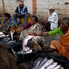 FISH MARKET by RakeshSyal
