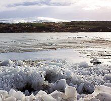 Loch Rannoch by Lynne Morris