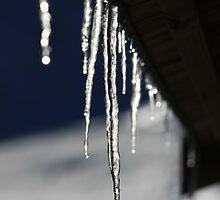 Icy by Elena Martinello