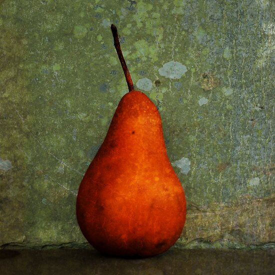 Pear by Barbara Ingersoll