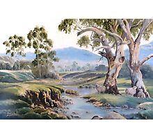 Another AUSTRALIA DAY Photographic Print
