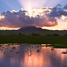 Sunburst over Mount Diablo by MattGranz