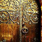 Ancient Door by carrieH