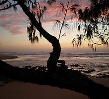 Moonee Sunrise 20th August 09 by Sue Wetherell