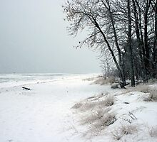 Lake Superior - winter style by Lynne Prestebak