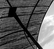 under my umbrella by fanis logothetis