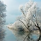 Frosty day on River Loisach by MelliCaster