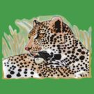 Spotted leopard by Marilyns