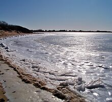 Glistening Ice of Napeague Bay  by Dandelion Dilluvio