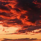 Fire In The Sky by Stacy Colean