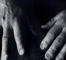 Working Hands by Barbara Wyeth