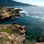 Blue Ocean - Point Lobos  by nortonlo
