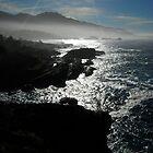 Sun Igniting Point Lobos by nortonlo