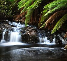 Snobs Creek Falls by Matt Bottos