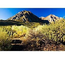 Morning at Mount McGee Photographic Print