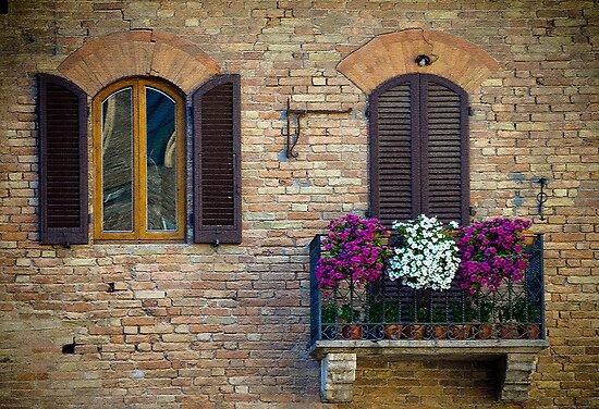 Windows by Gary Lengyel
