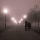 Park alley in the mist by Tomasz Juszczak