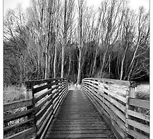 Footbridge, Hartham, Hertford - Hertfordshire (Black & White) by MoGeoPhoto