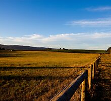 The Backyard - Yarra Glen  by Josh Prior