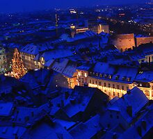 Blanket of the young night and Christmas glow by christopher363