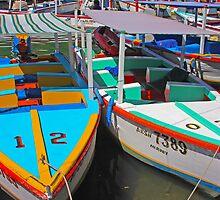 Peñeros de Laguna Restinga by Rob Diffenderfer