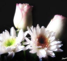 White Chrysanthemums and Roses 2 by Christopher Johnson