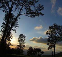 Trees at twilight, Elkaduwa,Sri Lanka by Rajeev Costa
